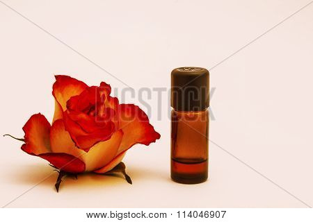 Aromatherapy Rose Oil