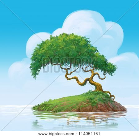 A Tree On Swamp