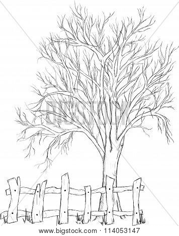 Sketch of a tree with a fence isolated on white background