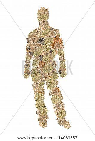 human form of grains