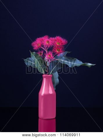 Elegant Bouquet Of Vivid Red Eucalyptus Flowers In A Pink Vase