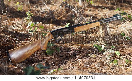 Rimfire Rifle