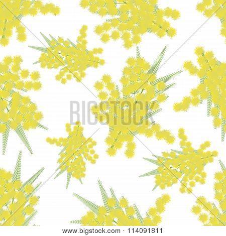 Mimosa Twigs Seamless