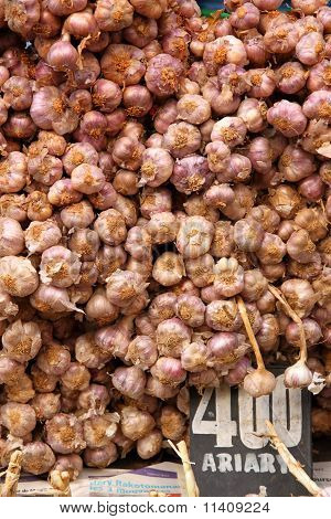 Garlic on sale