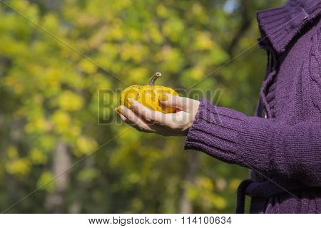 Female holding yellow gourd in the park