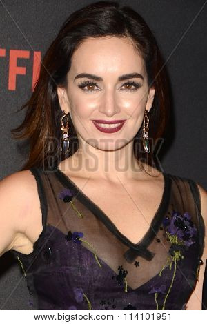 LOS ANGELES - JAN 10:  Ana de la Reguera at the Weinstein Company & Netflix 2016 Golden Globe After Party at the Beverly Hilton on January 10, 2016 in Beverly Hills, CA