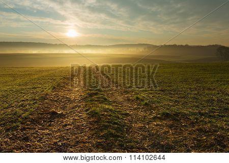 Beautiful Golden Sunrise over Foggy Field