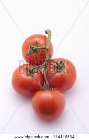 Close Up Of Tomatoes.
