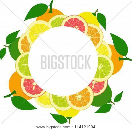 round frame from slices and whole lemons, oranges, lime, grapefruit on a transparent background