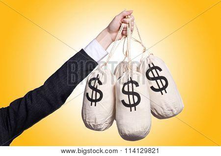 Woman with sacks of money on white