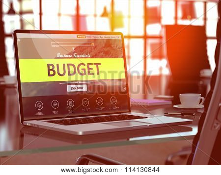 Laptop Screen with Budget Concept.