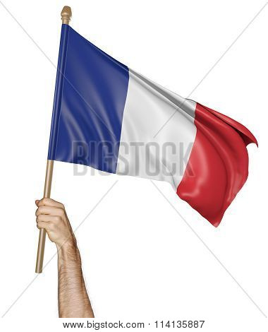Hand proudly waving the national flag of France