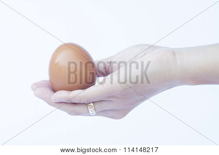 Hand Holding Egg Isolated On White Background