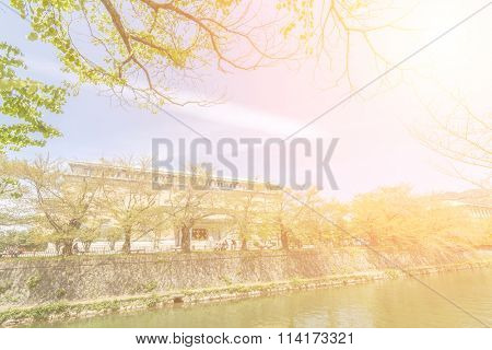 Kyoto scenery with river and green tree in sunny day, Kyoto, Japan, Asia.