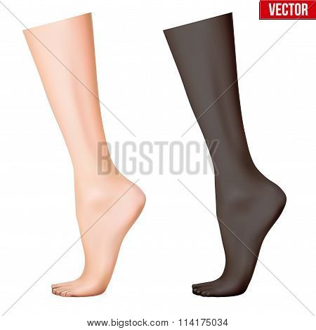 Human legs. Vector Illustration