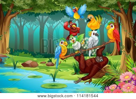 Wild animals in the forest illustration