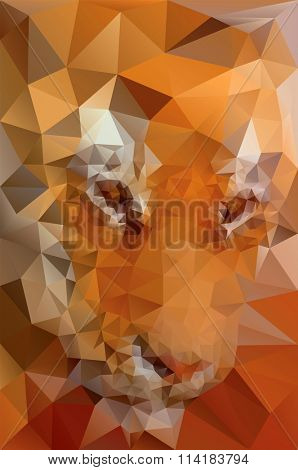 Low Poly Tiger Face Vector Illustration
