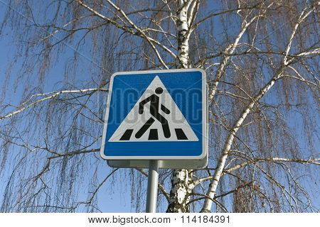 Metal Pedestrian Sign And Birch Tree.