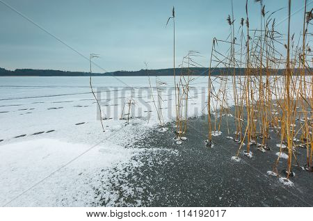 Winter Frozen Lake Landscape.