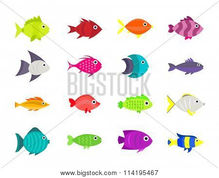 Cute fish vector illustration icons set. Fish flat style vector illustration. Fish icons isolated. Tropical fish, sea fish, aquarium  fish set isolated on white background