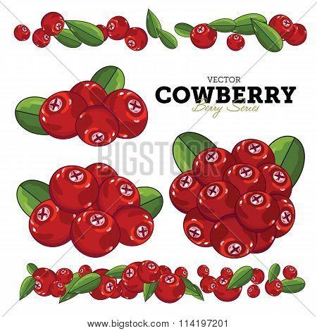 Cowberry Set, Vector.