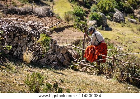 Qechua Lady On The Isla Del Sol On Lake Titicaca In Bolivia