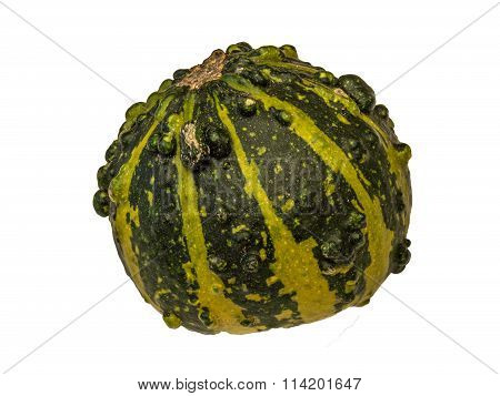 Pumpkin 9 isolated