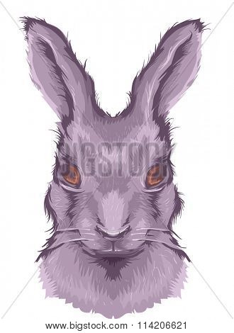 Illustration Featuring the Head of a Large Fluffy Hare