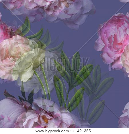 art vintage watercolor blurred floral pattern with pink and white peonies isolated on  violet background. Double Exposure effect
