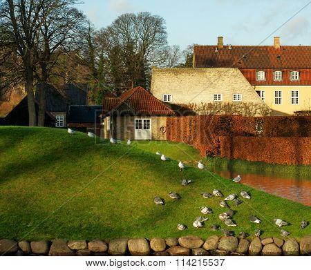 Danish Rustic Landscape