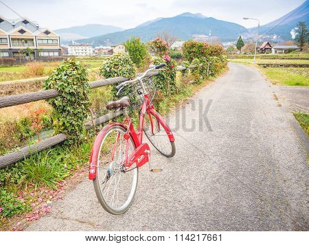 Yufuin to see natural viewby bicycle