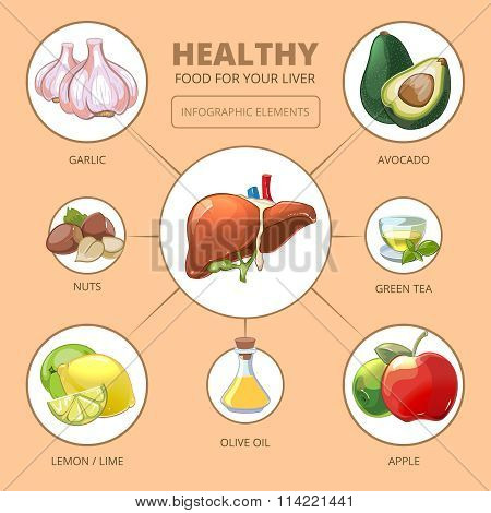 Healthy foods for liver. Medical health infographic