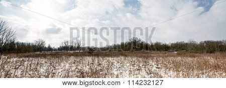 Snowy Winter Prairie