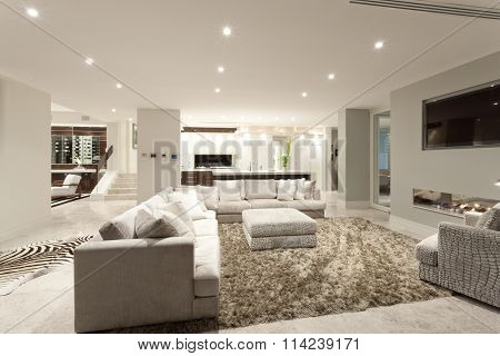 Spacious Living Room With A Big Carpet