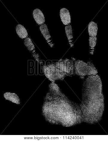 White Handprint