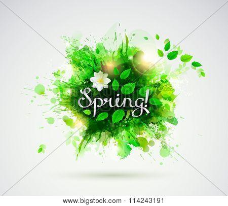 written word Spring. Season banner with fresh green leaves