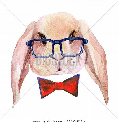 Rabbit Head In Glasses