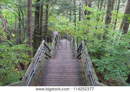 Cut River staircase