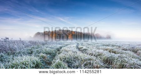 Cold Autumn Morning