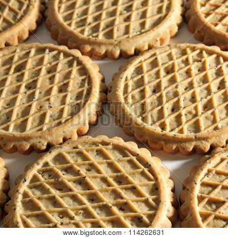 Background of biscuits in shape of circle
