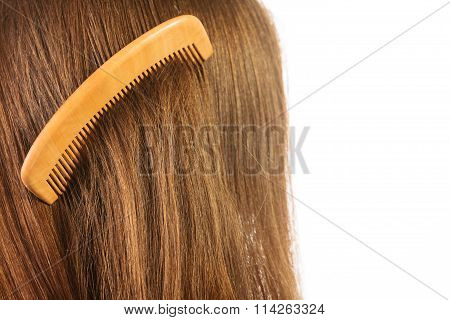 Haircare. Brown Hair With Comb.