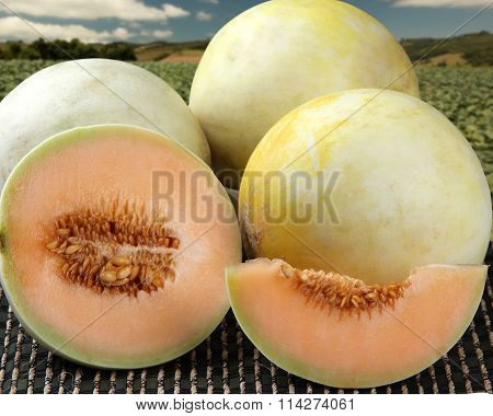Some Melons Over A Wooden Surface