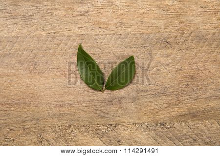 Berry Jaboticaba Flower On Wooden Table