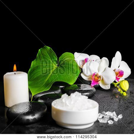 Beautiful Spa Concept Of White Orchid Flower, Phalaenopsis, Green Leaf With Dew, Sea Salt And Candle