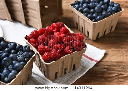 Closeup of containers of fresh picked blueberries and raspberries.