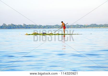 INLE LAKE, MYANMAR - NOVEMBER 15, 2015: Local worker collecting weed from the fresh water on Inle Lake, Myanmar on the 15th November, 2015