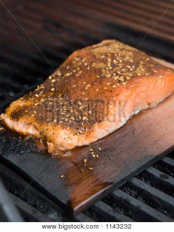 Salmon Fillet On Cedar Plank Smoke Cooking On Bbq