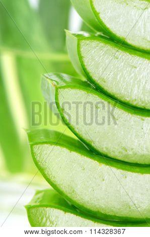 Stack Of Slice Aloe Vera.