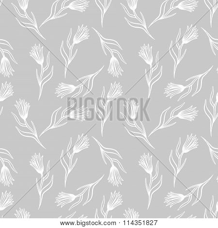 Cornflower vector seamless pattern.