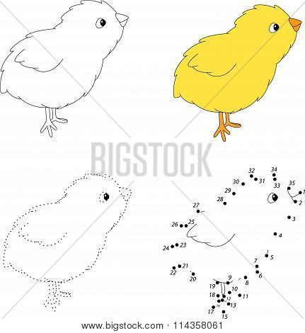 Cartoon Chick. Vector Illustration. Dot To Dot Game For Kids